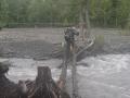 Crossing a creek on two logs