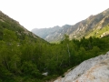 looking down lamoille canyon