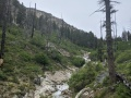 heading up trail creek trail